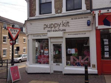 Puppy Kit in Buckhurst Hill